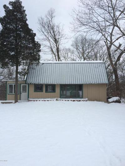 Allegan County Single Family Home For Sale: 415 S Cedar Street