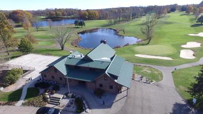 Kalamazoo County Single Family Home For Sale: 6415 W F Avenue