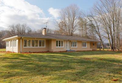 Kalamazoo County Single Family Home For Sale: 7375 W W Avenue