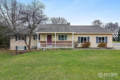 Zeeland Single Family Home For Sale: 10388 Riley Street