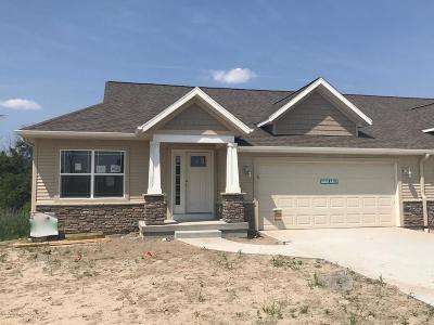 Zeeland Condo/Townhouse For Sale: 10071 Prairie Grass Court #62