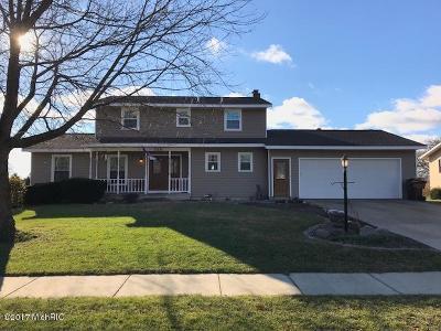 Zeeland Single Family Home For Sale: 226 Huizenga Avenue