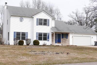 Kalamazoo County Single Family Home For Sale: 5022 Stapleton Drive
