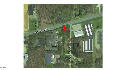 Kalamazoo County Residential Lots & Land For Sale: 7501 Stadium Drive