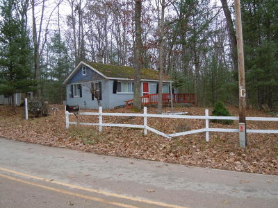 Newaygo County Single Family Home For Sale: 2305 Lincoln