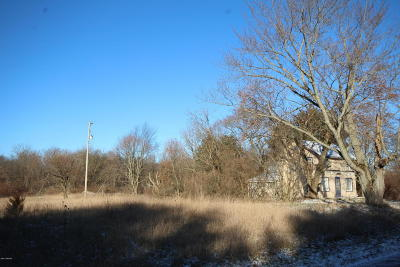 Kalamazoo County Residential Lots & Land For Sale: 9372 S 29th Street