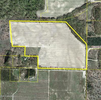 Manistee County Residential Lots & Land For Sale: 45 Acres Mud Lake Road