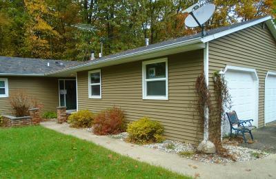 Kalamazoo County Single Family Home For Sale: 8794 W S Avenue