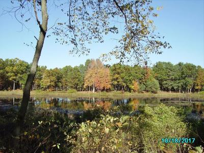 Kent County Residential Lots & Land For Sale: 12185 Sandy Bottom Street NE