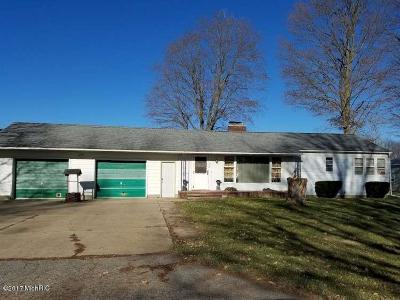 Allegan County Single Family Home For Sale: 208 Grant Street