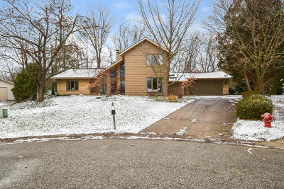 Grand Rapids Single Family Home For Sale: 5043 Cedar Ridge Street NE