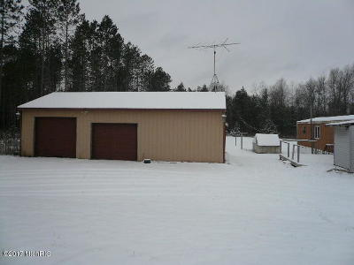 Mecosta County Single Family Home For Sale: 13407 60th Avenue