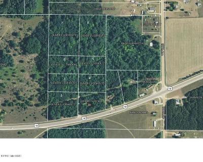 Osceola County Residential Lots & Land For Sale: 00 Us10 #Lot 7