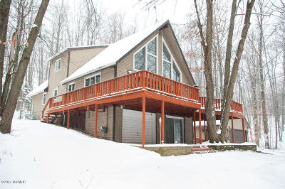 Mecosta County Single Family Home For Sale: 10306 Medicine Bow Trail