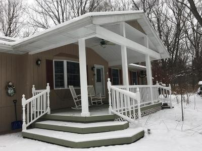 Otsego Single Family Home For Sale: 281 19th Street