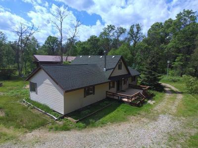 Osceola County Single Family Home For Sale: 15872 Smith Lane