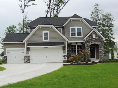 Hudsonville Single Family Home For Sale: 5282 Eagle Cove Drive