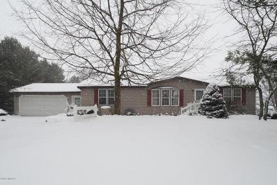 Delton Single Family Home For Sale: 6518 Osborne Road