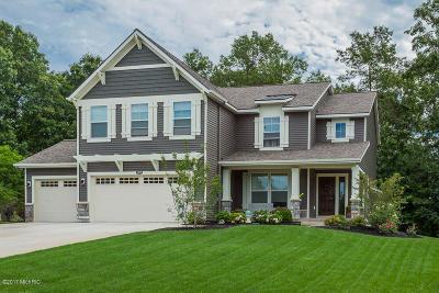 Hudsonville Single Family Home For Sale: 3533 Jamesfield Drive