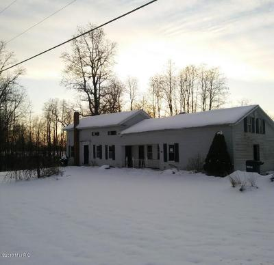 Allegan Single Family Home For Sale: 738 M-40 Highway