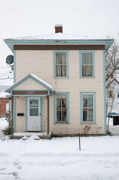 Mecosta County Single Family Home For Sale: 207 N 3rd Avenue