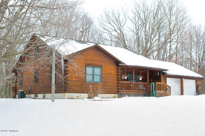 Newaygo County Single Family Home For Sale: 3483 E 8 Mile Road