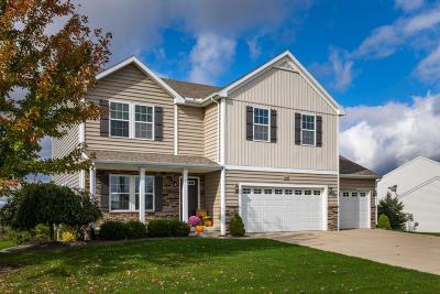 Hudsonville Single Family Home For Sale: 4149 Friesian Drive