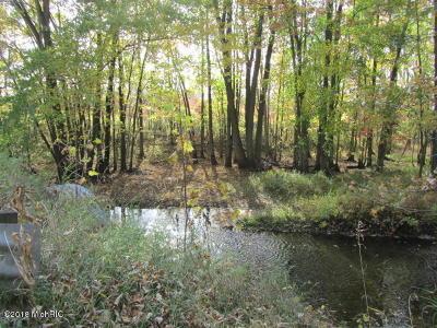 Cedar Springs Residential Lots & Land For Sale: 10791 Walander NE