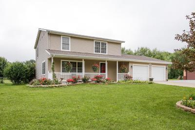 Van Buren County Single Family Home For Sale: 07201 32nd Street