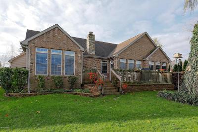 Vandalia Single Family Home For Sale: 15202 Joseph Street