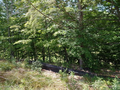Saugatuck, Douglas Residential Lots & Land For Sale: 612 Artisan Row Court #25