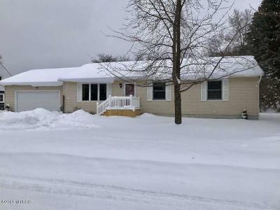 Ludington Single Family Home For Sale: 909 Pine Street
