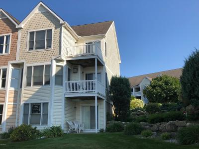 Manistee Condo/Townhouse For Sale: 90 Charter Court