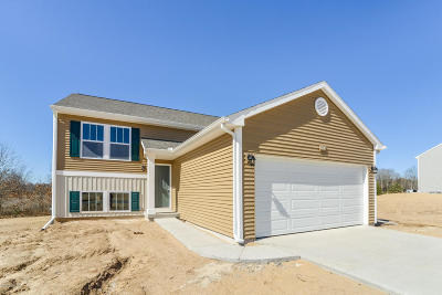 Cedar Springs MI Single Family Home For Sale: $229,900