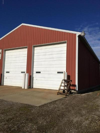 Berrien County Commercial For Sale: 10295 Us 12 Highway