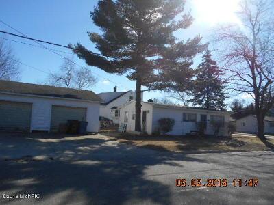 Ludington Single Family Home For Sale: 502 N Staffon Street