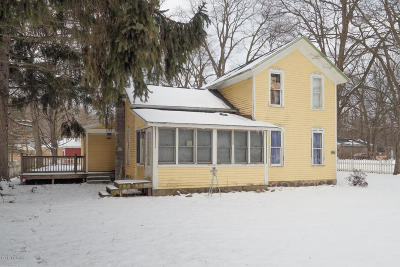 Allegan Single Family Home For Sale: 147 Park Drive