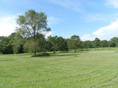 Stevensville Residential Lots & Land For Sale: Marquette Woods