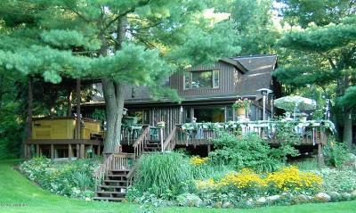 Bitely MI Single Family Home For Sale: $850,000