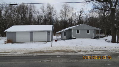 Hastings Single Family Home For Sale: 1464 E Center Road