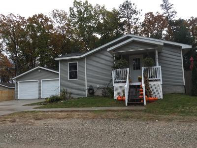 Pentwater Single Family Home For Sale: 5589 Whiting