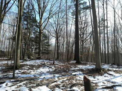 Allendale Residential Lots & Land For Sale: 12494 60th