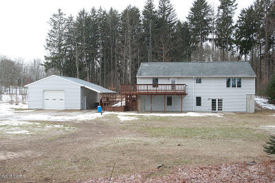 Newaygo County Single Family Home For Sale: 3231 W 16th Street