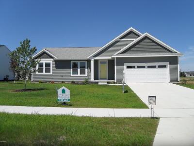 Hudsonville Single Family Home For Sale: 4213 Shetland Drive