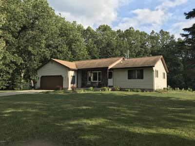 Muskegon Single Family Home For Sale: 4725 E Summit Avenue