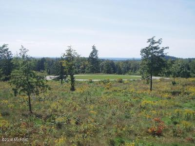 Manistee County Residential Lots & Land For Sale: 27 Celestial Ridge