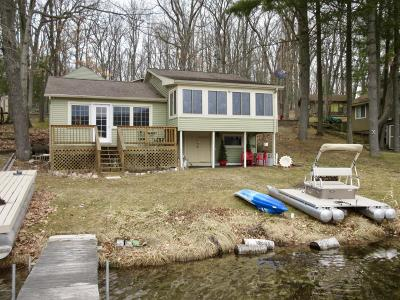 Isabella County, Mecosta County, Montcalm County, Newaygo County, Osceola County Single Family Home For Sale: 8647 Green Road