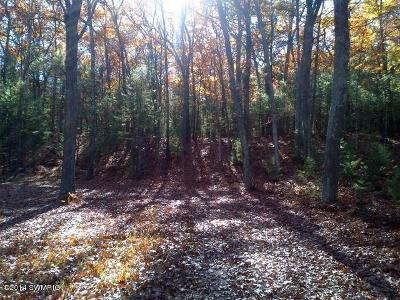 Oceana County Residential Lots & Land For Sale: Mohawk Street