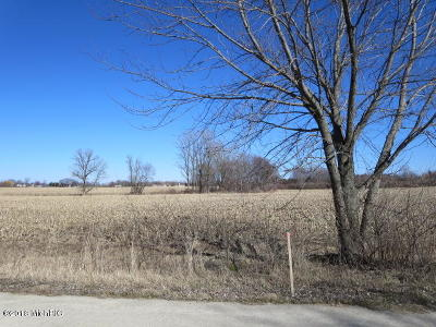 Holland, West Olive Residential Lots & Land For Sale: 6174 146th Avenue #E