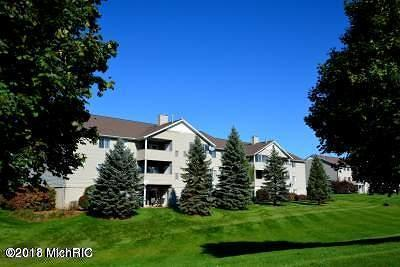 Caledonia Condo/Townhouse For Sale: 8516 N Jasonville Court SE #108